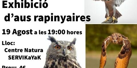 RAPINYAIRES