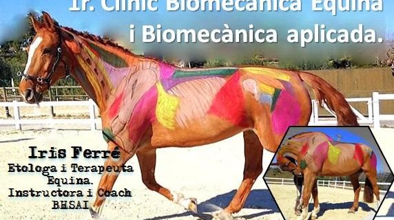 1r CLINIC EN BIOMECANICA EQUINA I BIOMECANICA APLICADA